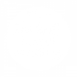 2019 Pick the knot best of weddings